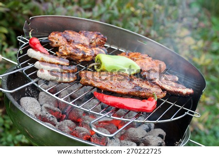 hearty barbecue party - stock photo