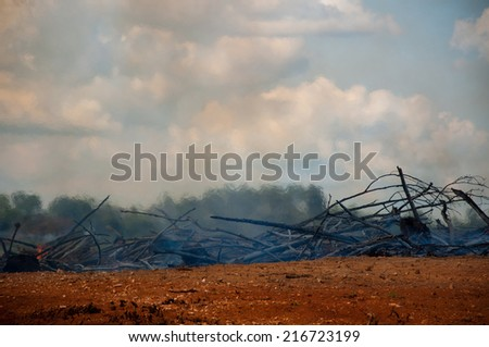 Heat from a smoldering fire ripples the air above it. - stock photo