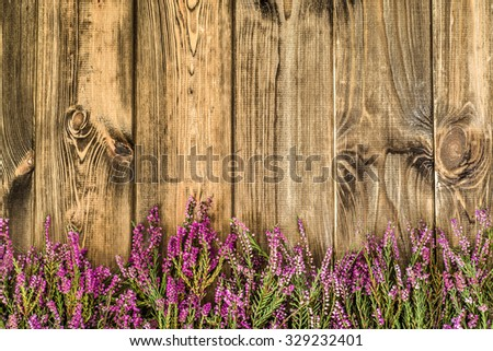 Heather flowers on rustic wood background. Flowers background. - stock photo