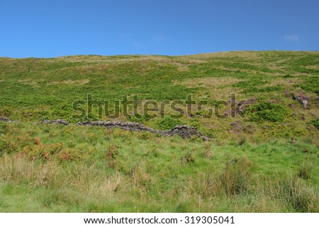 Heather on Moorland Around Cow Castle, an Iron Age Hill Fort, near Simonsbath on Exmoor National Park in Somerset, England, UK - stock photo