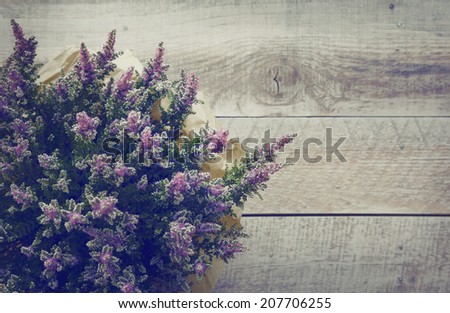 heather violet flowers over rustic wooden shabby background.