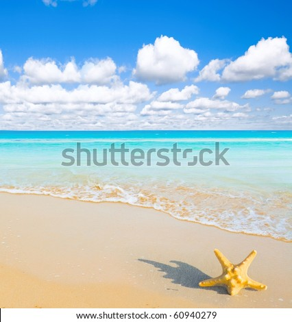 Heavens got Gifts from the Sea - stock photo