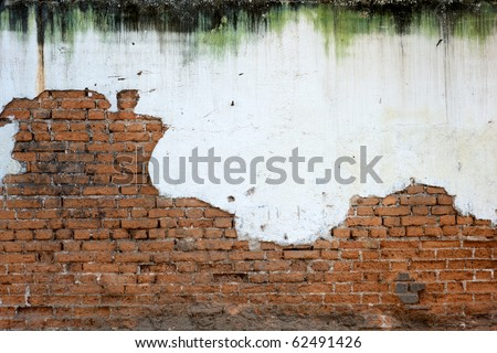 Heavily mold stained white plaster has crumbled to reveal a worn brick wall below - stock photo