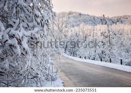 Heavy branches covered with ice and snow near scenic winter road through icy forest after snowfall. Ontario, Canada. - stock photo