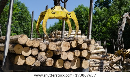 heavy equipment loading with clipper cut logs  - stock photo