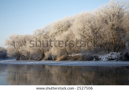 Heavy frost coats the river side trees