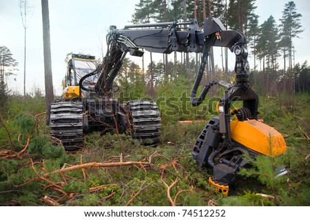 Heavy machine used for deforestation in clearing - stock photo