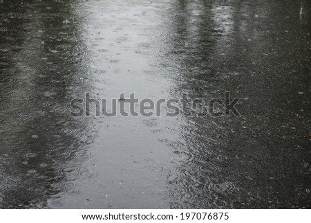 Heavy rain on the street. Spring downpour falling on a city street. - stock photo