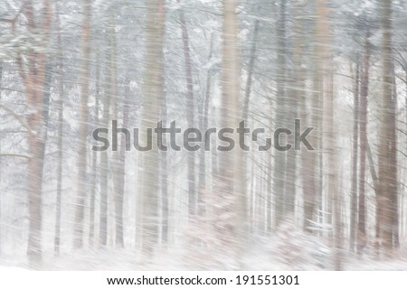 Heavy Snow Falling in  a Forest. Motion blurred in-camera for effect. - stock photo