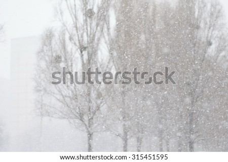 Heavy snowfall in the city. Selective focus on falling snowflakes, gray trees on the background.  - stock photo