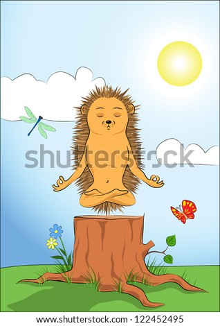Hedgehog doing yoga-meditation. - stock photo