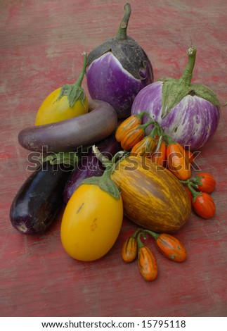Heirloom Eggplant - stock photo