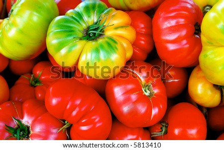 Heirloom Tomato in a bunch. Red, green and yellow. - stock photo