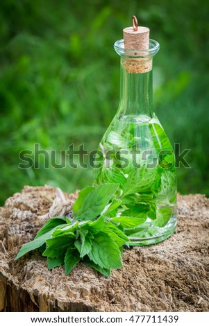 Helathy and homemade liqueur with mint and alcohol