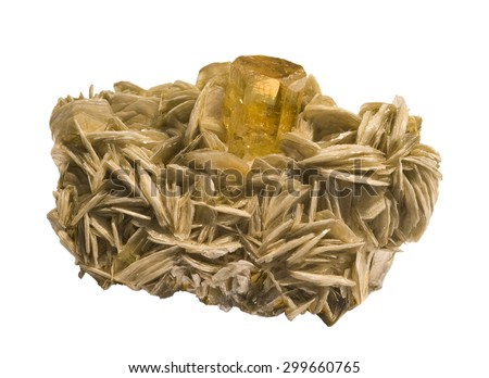 Heliodor (often called Golden beryl or yellow aquamarine) on Muscovite, isolated on white. - stock photo