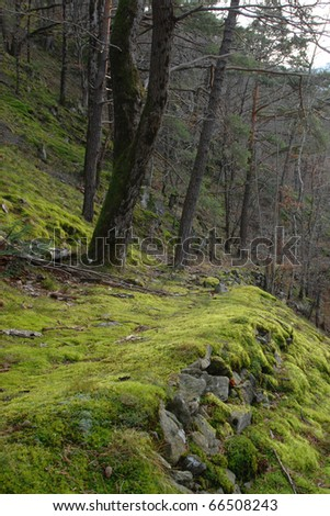 Hell Valley, Black Forest at autumn, Germany - stock photo