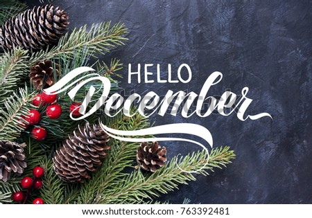 Hello December Hand Lettering Inscription. Spruce Branches And Cones Frame.  Great Season Texture With