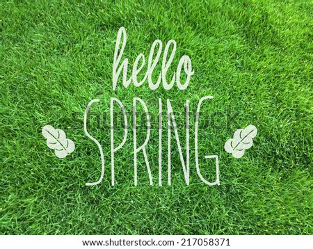 hello spring/spring/grass - stock photo