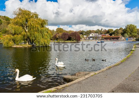Helston Boating Lake Cornwall England UK Europe - stock photo