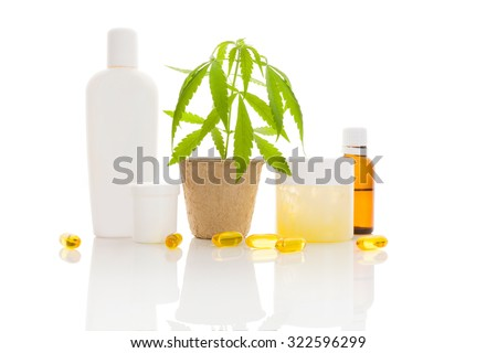 Hemp cosmetics. Moisturizer, cream, shampoo, oil and young cannabis plant in plant pot isolated on white background. Healthy natural ecological cosmetics. - stock photo