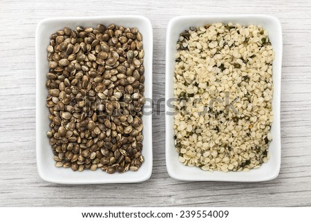 hemp seeds - stock photo