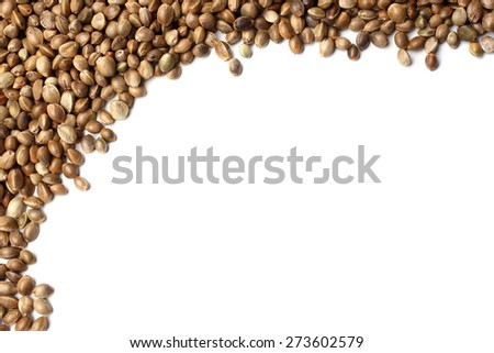 Hemp seeds on white background - stock photo