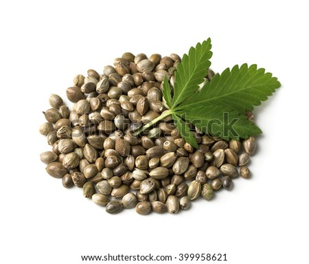 Hemp seeds with a green leaf on a white background - stock photo