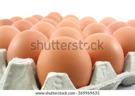 Hen eggs in paper Panel on white background