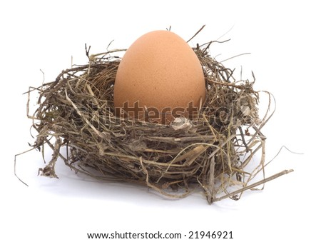 Hen's egg in a nest on white background