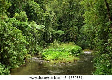 Henrietta Creek, Wooroonooran National Park, Queensland, Australia - stock photo