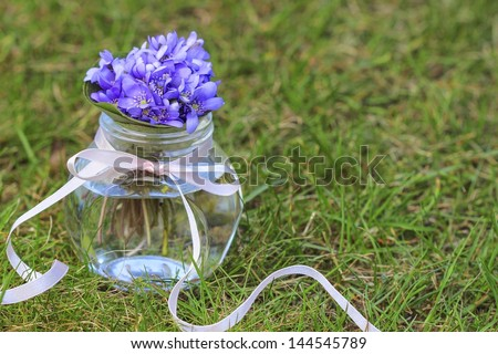 Hepatica flowers, pretty small bouquet on green grass. Copy space. - stock photo