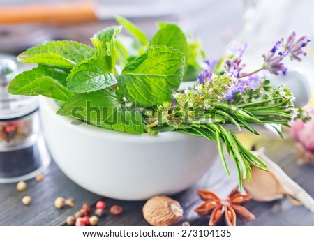 herb and aroma spice - stock photo