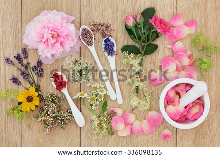 Herb and flower selection used in herbal medicine loose, in porcelain spoons and mortar with pestle over oak background. - stock photo