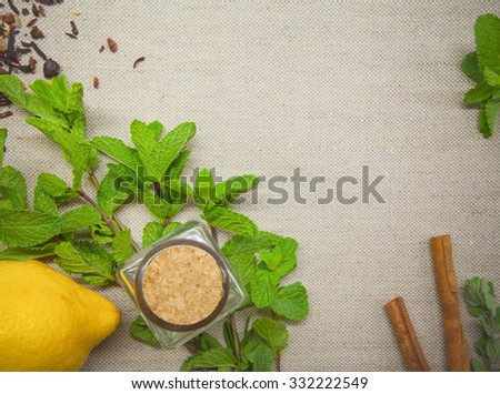 Herb and spice ingredients on a grey background - stock photo