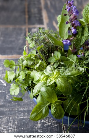 Herb garden in a blue bowl, over old timber.  Includes basil, chives, rosemary, flowering sage, thyme, mint, rosemary, oregano, and coriander or cilantro. - stock photo