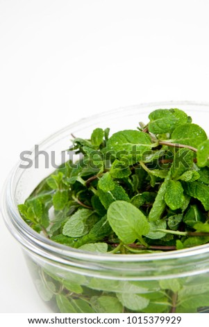herb in bowl