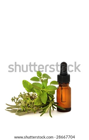 Herb leaf selection with an aromatherapy essential oil dropper bottle, over white background.