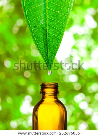 Herbal, alternative medicine, water drop falling down from a leaf to the bottle - stock photo