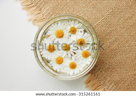 Herbal beauty treatment garden chamomile flower water in bowl home remedy - stock photo