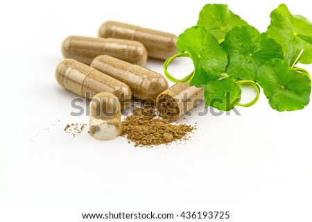 Herbal capsule and Green Asiatic Pennywort (Centella asiatica , Hydrocotyle umbellata L or Water pennywort ) isolated on white background. - stock photo