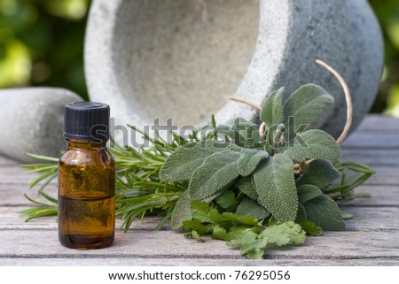 Herbal essence with a pestle and mortar, outdoors - stock photo