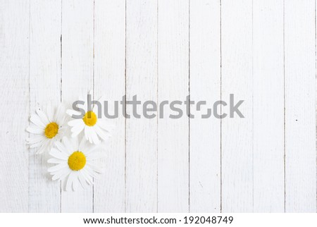 herbal flowers on white wood table - stock photo