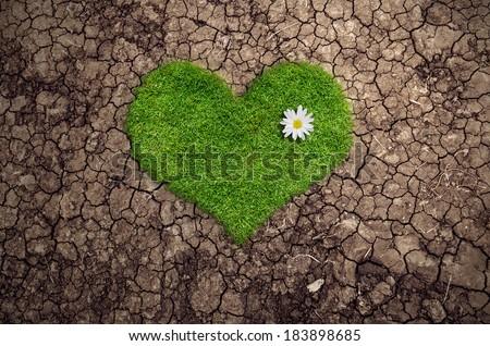 Herbal heart amid drought  - stock photo