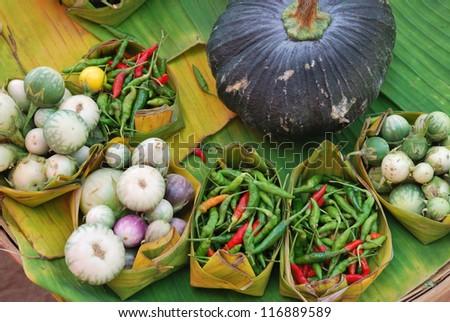 Herbal ingredients - stock photo
