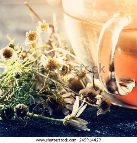 Herbal medicine: Cup of Chamomile tea and Chamomile flowers close up - stock photo
