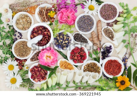Herbal medicine flower and herb selection forming an abstract background over cream paper.  - stock photo