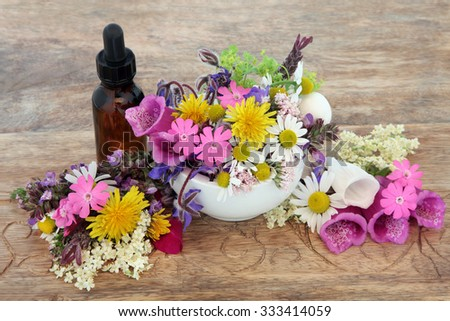 Herbal medicine flower and herb selection in a mortar with pestle and dropper bottle over hemp paper background. - stock photo