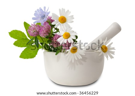 Herbal medicine (healing herbs, mortar and pestle) - stock photo
