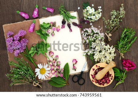 Herbal medicine preparation with herbs and flowers used in natural alternative remedies with hemp paper notebook and mortar with pestle on rustic oak wood background. Top view.