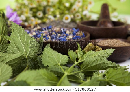 Herbal medicine, wooden table background - stock photo